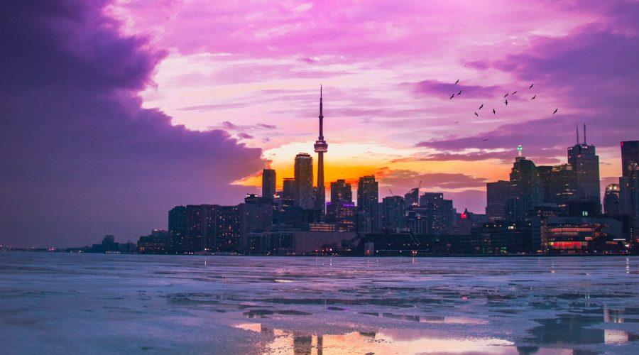 Some of the Best Vegan Restaurants in Toronto